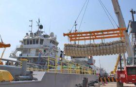 La Apicam registra un aumento en exportaciones